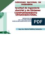 Comportamiento Organizacional introduccion