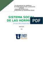 Sistema Social de Las Hormigas