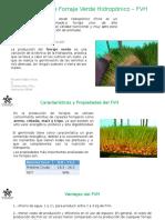 Presentación FVH SENA.pptx
