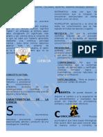 Concepto etimológico.docx