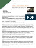 2 ¿Cómo Afecta Al Cuerpo La Insuficiencia Renal_ - The National Kidney Foundation