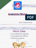 Anatomia Quirurgica de La Pelvis