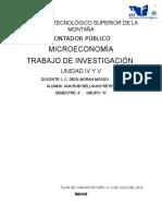 INVESTIGACION MICRO.docx