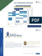Malla Ingenieria Comercial Continuidad de Estudios
