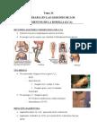 Tratamiento de fisioterapia en LCA