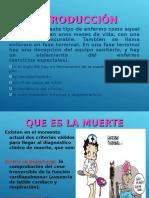 fallecimientos-2003.ppt