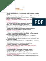 Contenidos Básicos Comunes.doc