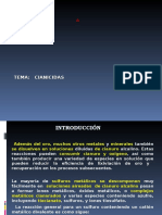 6._Cianicidas.ppt[2].ppt