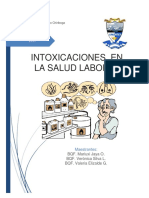 Ensayo 8, Intoxicación en Salud Laboral