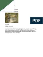 Analisis Petrografi Mapping
