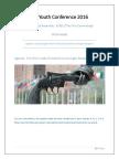MUN Small Arms Trade
