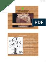 Madeira  - Materiais de construcao II.pdf