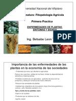 2. Presentacion Enfermedades de Plantas.signos y Sintomas