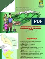 Compensación Por Servicios Ambientales Hidrológicos en Moyobamba (CSE)