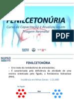 10-_-Nocoes-Basicas-de-Fenilcetonuria