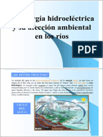 afeccion_hidroelectrica (1).pdf