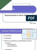 Bacterias Prof. Fabio