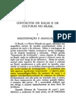 Ramos, Arthur - A Aculturação Negra No Brasil