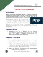 Informe Final Del Estudio de Mercado