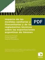 Galperín-Carlos.pdf