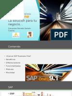 SAP_PPT FINAL pamela.pptx