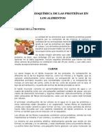 FUNCIÓN-BIOQUÍMICA-DE-LAS-PROTEÍNAS.docx