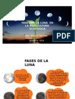 Fases de La Luna en La Agricultura