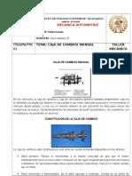 Caja Manual y Automatica