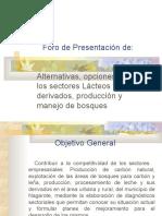 Presentación Foro 27 de ENERO 2006 RAUL.ppt0001