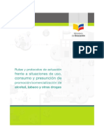 Manual Rutas y Protocolos Drogas (2)