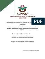 Ensayo de Metodología Para El Desarrollo de Las Capacidades Físicas