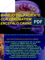 ENCEFALO_CRANEANO1