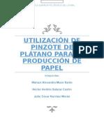 Utilizacion de Pinzote de Platano Para La Produccion de Papel