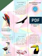 Triptico Aves Endemicas