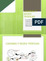 Cadenas y Redes Tróficas Recursos