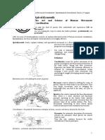 Spiro Dynamics