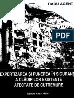Seism-Agent.pdf