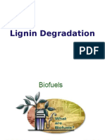 Enzyme for Ligno Cellulosic Materials