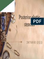 Posterior Glottic Stenosis 20070822