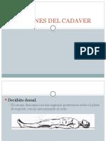 posiciones de cadaveres - copia.pptx
