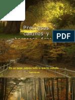 Preciosos Caminos y Hermosas Fr Diapositivas