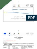 lectie_tic.pdf