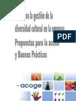 Guia Para La Gestion de La Diversidad Cultural en La Empresa, Propuestas Para La Accion y Buenas Practicas