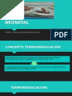 Termoregulación Neonatal