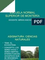 El Ecosistema Mirian Anicharico