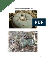 Ficha técnica de Lophophora diffusa. Apuntes técnicos para el conocimiento de la situación de conservación de especies de la familia Cactaceae en el estado de Queretaro