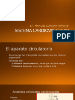 Clase 6_sistema Cardiovascular