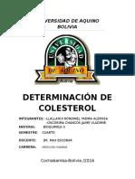 colesterol.docx