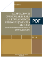 ADAPTACIONES-CURRICULARES-PCEI123