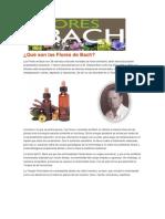 Qué Son Las Flores de Bach